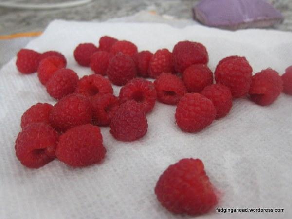 Mmmm. I love raspberries!