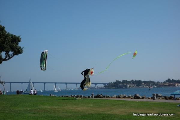 Puppy kite!