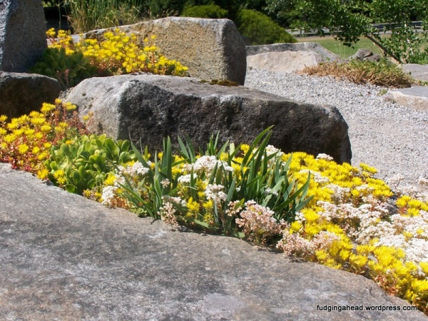 It has different gardens, like this alpine/mountain one.
